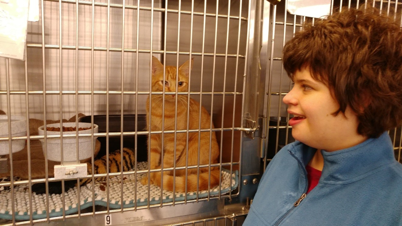 Young person looking at cat